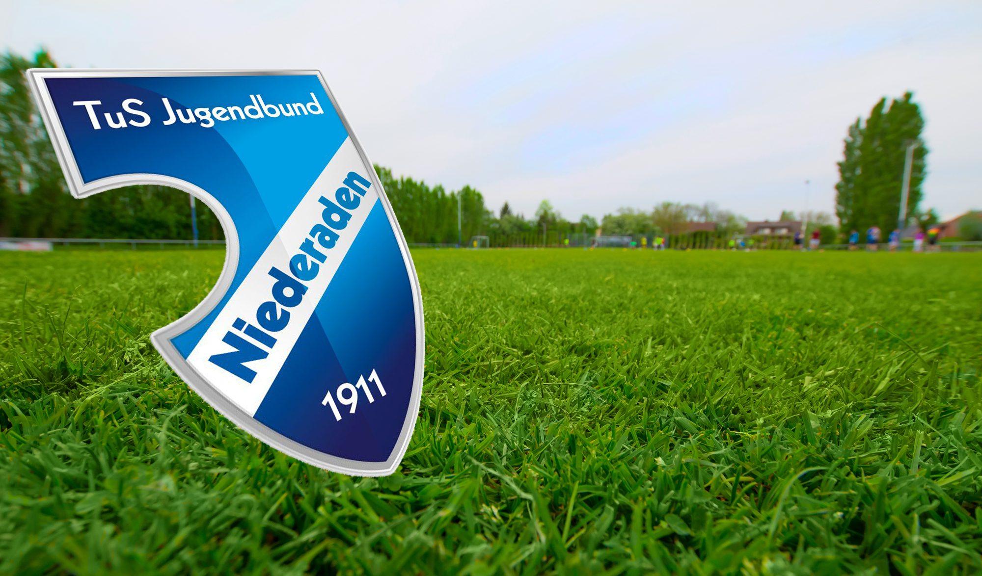 Wappen und Spielfeld TuS Niederaden